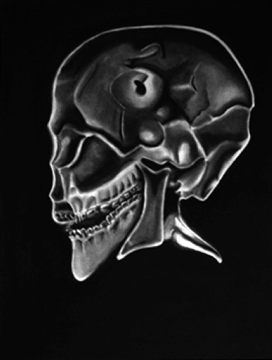 Skull-without-borders